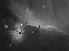 Horsehead and Flame Nebulae in H-Alpha (Terry Hancock www.downunderobservatory.com) Tags: camera sky monochrome night stars photography mono pier back backyard fotografie photos 33 thomas space shed science images astro apo m observatory telescope nebula astrophotography orion barnard astronomy imaging ccd universe ic434 cosmos horsehead paramount luminance lodestar teleskop astronomie byo refractor deepsky f55 halpha alnitak astrograph autoguider starlightxpress Astrometrydotnet:status=solved Astrometrydotnet:version=14400 tmb92ss mks4000 gt1100s qhy9m Astrometrydotnet:id=alpha20121299879278