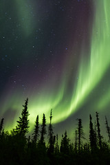 Diamonds In The Sky (2012) (coalphotography) Tags: canada photography aurora alexander northwestterritories farnorth northernlights auroraborealis yk 2012 yellowknife coalphotography alexanderlegaree farnortharcticthreads
