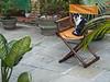 Senhor Capô (Kin Guerra) Tags: tree verde green cat de chair head gato salvador árvore whitecat cabeça cadeira gatobranco