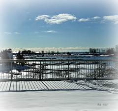 HFF! (Trinimusic2008 - stay blessed) Tags: trees sky sun lighthouse lake snow toronto ontario canada color colour nature lines clouds marina fence boats shadows snowy empty lakeshore to lakeontario railings hff trinimusic2008 judymeikle december312012 editsmadewithpicmonkey