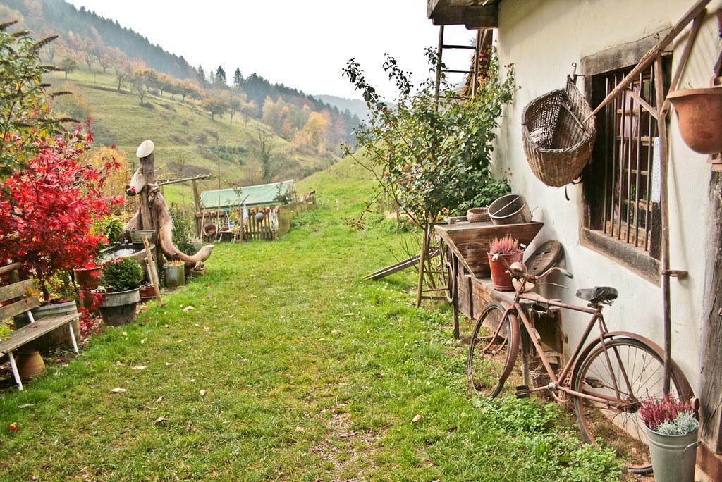 Freiburg - Black Forest