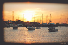 Punta del Este sunset (nina's clicks) Tags: sunset sea sun rio sailboat river boats puerto uruguay atardecer harbor mar barcos yacht sail puntadeleste veleros
