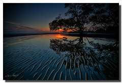 The world is round and the place which may seem like the end may also be only the beginning. (Christolakis) Tags: trees reflection sunrise australia brisbane queensland ripples hdr nudgeebeach graduatedndfilter 1740f40l hitechfilters oloneophotoengine canon5dmklll