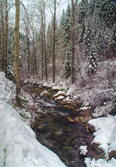 Winter In the Pacific Northwest (SimplyAmy74) Tags: winter snow stream idaho pacificnorthwest wallace