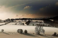Gloucestershire (Eric Goncalves) Tags: blue trees winter snow cold color nature beautiful clouds landscape shadows gloucestershire array nikond7000 ericgoncalves rememberthatmomentlevel1 rememberthatmomentlevel2