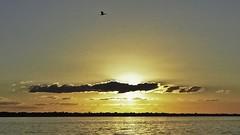 Obliterado //  Obliterated (Parchen) Tags: pordosol luz sol rio gua raios cores cu nuvens cor ocaso crepsculo iluminado dourados rioparan parchen carlosparchen
