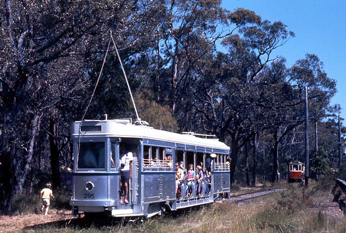 Sydney Tramway Museum (STM) ex Brisbane City Council Dropcentre tram No 295 and in the distance Dreadnought tram No 180 on the track at the old museum site off the Princes Highway, Loftus, N.S.W. Australia.