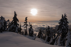 Grouse Mountain Snowshoeing