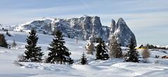 tutto BRILLANTE a SEISERALM: SCILIAR EURINGER SANTNER (aldofurlanetto) Tags: neve gennaio seiseralm