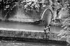 2016-08-18-001-MaMa - Augsburg - CPotC - 0039 - BW00001s - W1920 (mair_matthias_1969) Tags: augsburg bayern deutschland de lumix panasonic dmcg7 dmcg70 mft microfourthirds g7 g70 lumixg7 lumixg70 nophotoshop keineschmutzigentricks ohneschmutzigetricks nodirtytricks gvario14140f3556 outdoor kanal channel zaun fence