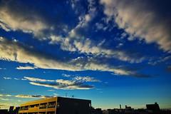 20160821_DP0Q5261 (NAMARA EXPRESS) Tags: landscape sky cloud blue weather building city deepsky deepblue morning summer fine outdoor color foveonclassicblue toyonaka osaka japan foveon sigma dp0 quattro wide ultrawide superwide namaraexp