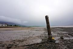 Carsethorn (stonetemplepilot5) Tags: solwaycoast scotland sonya6000 sony a6000 coastline beach ngc sonyflckraward