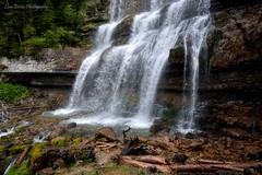 Waterfall (Pistolero79) Tags: waterfall cascata montagna mountain trentino valrendena cascatadimezzo vallesinella forest bosco dolomiti stream