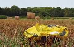 abgeerntet (maxmedl) Tags: stroh strohernte strohballen gelb entsorge entsorgung getreide getreidefeld weizenfeld