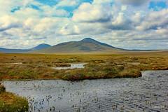 The Flow Country (Labes59) Tags: scotland sutherland theflowcountry rspb rspbcentre wildlife walks wildflowers bogs naturereserves forsinard unitedkingdom uk europe