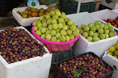 Sa Pa, Vietnam (Quench Your Eyes) Tags: chsapa dao honglinsonmountains hmong laocai laocaiprovince muonghoavalley sapa sap tay vietnam vietnamese asia biketour fruit northwestvietnam southeastasia travel ttsapa