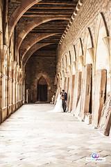 Hochzeitsphotos-Jana-Philip-56 (hochzeitsphotos-eu) Tags: fotograf hochzeitsfoto hochzeitsfotograf hochzeitsfotografie hochzeitsfotos hochzeitsphotos wedding weddingphotography