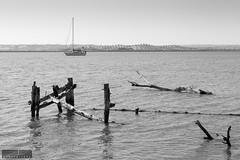Where do I dock now? (OscarCordeiro) Tags: spain ayamonte river guadiana boat