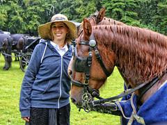 2016 Kastelentocht (Steenvoorde Leen - 1.9 ml views) Tags: doorn 2016 utrechtseheuvelrug kastelentocht beukenrode landgoed jachthuisbeukenrode paarden pferde horse horses aanspanning koetsen kutsche vierspan cheval coche carosse armement regen rainy wet nat pluie