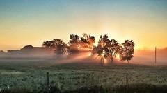 Foggy Navan Sunrise (CdnAvSpotter) Tags: sunrise navan ontario ottawa earlybird