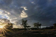 Nuages au coucher de soleil_7286 (lucbarre) Tags: ciel sky ciels nuage nuages sun soleil soir coucher shadow shadows