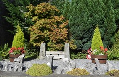 Unusual garden feature (Paul Thackray) Tags: yorkshire yorkshiredalesnationalpark northyorkshire wharfedale kettlewell stocks garden 2016