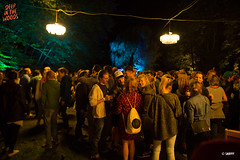 20160903_DITW_00050_WTRMRK (ditwfestival) Tags: ditw16 deepinthewoods massembre