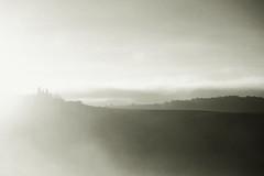 foggy morning in val d'orcia, tuscany (trevis_lu) Tags: photo landscape paesaggio bianconero blackwhite valdorcia tuscany toscana colline hills nikondf nikkor80200f28