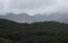 IMG_3520 (kz1000ps) Tags: tour2016 clouds oregon washingtonstate columbiariver border columbiarivergorgenationalscenicarea fog mist grey pinetrees cliffs canyon cascaderange
