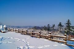 Winter wonderland at Hyundai Sungwoo Resort, South Korea (UweBKK (α 77 on )) Tags: mountain snow ski ice sport day sony south korea resort clear alpha dslr hyundai 550 winterbeauty wonju thegalaxy gangwon sungwoo pwwinter
