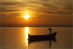 _MG_9950 (tino rovira) Tags: sunset landscape atardecer paisaje albufera albuferadevalencia comunitatvalenciana parcnaturaldelalbuferadevalencia