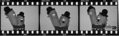 Laurel & Hardy (Malen Alomar /malenojodoro) Tags: lana crochet hilo amigurumi laurelhardy ganchillo elgordoyelflaco cactuscrochet amigurumicineclsico