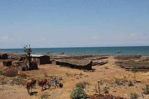 Breakdown on Lake Malawi (2)