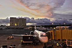 Honolulu Airport Sunset (Arp Gallery) Tags: sunset plane island hawaii airport gallery oahu aircraft hawaiian honolulu airways arp zazzle photodigital arpgallery