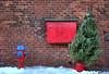 Christmas tree at the Distillery (Jude Marion) Tags: toronto ontario canada christmastree christmaslights distillery thedistillerydistrict