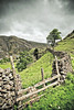St John's in the Vale (Jez Blake) Tags: park uk mountain lake tree st stone wall fence gate district dry vale national cumbria johns cragg theacademytreealley