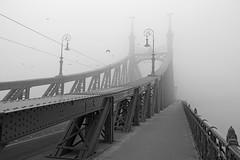 Budapest - the Liberty bridge covered in fog 4 (b&w) (Romeodesign) Tags: bridge winter bw white mist black birds fog liberty freedom haze iron hungary empty budapest perspective structure fade ironwork duna brücke danube atmospheric szabadság disappear mistycal 550d
