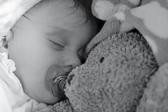 faustine (gonzai60) Tags: bear sleeping en baby children model nikon child teddy sleep bébé ours peluche modèle d90