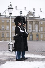 Royal guards (Karibouski) Tags: christmas winter snow architecture copenhagen 50mm nyhavn 14 hipster royal danish hype guards finderskeepers norrebro