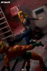 This will be over quick... (Clarkent78) Tags: toys actionfigures dccomics mattel diorama blackcanary justiceleague copperhead jla toyphotography dcuniverse matteltoys dcuc toyphotographer toydiorama dcuniverseclassics clarkent78 jeffquillope toyphotographyaddict