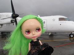 Blythe Physical Challenge #72 Plane, Plane, Go Away