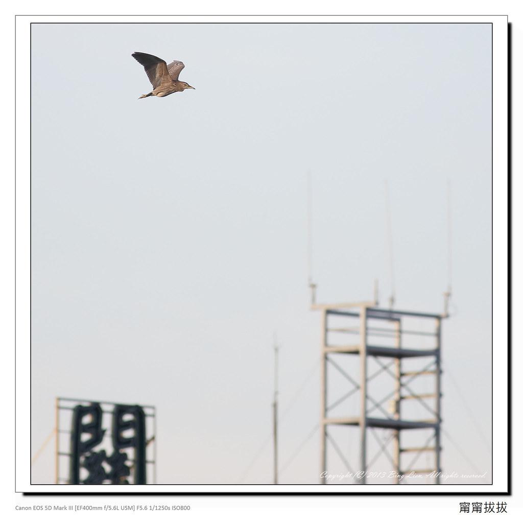 frame_BING2022