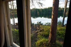 Par la deuxime fentre (Samuel Raison) Tags: finlande finland mkki mkkilife linaigrettes tourbire nature nikon nikond2xs nikon41635mmafsgvr nikon4200400mmafsgvr