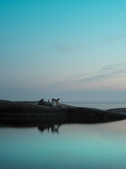 White Night on the Island (happyphotons) Tags: белая ночь финский залив остров на сострове пейзаж море крастота природа супер цвет полный гелиос 58мм романтик вау отражение вода the gulf finland island sostrove landscape sea krastota nature super color full helios 58mm romantic wow reflection water