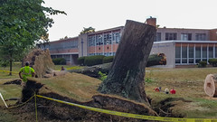 trees down at Lutheran High School East 03 - 2016-08-11 (Tim Evanson) Tags: clevelandheightsohio clevelandheightsmicroburst weather trees myhouse