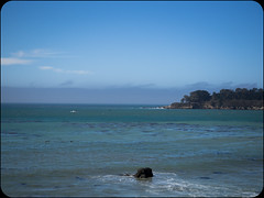 Whales (adolgov) Tags: california pch ocean pacificcoasthighway pacificocean whales