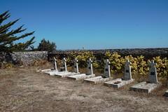 Un cimetière pour enfants dans les dunes (Jeanne Menjoulet) Tags: enfants dunes tombes 1930 1950 tuberculose poliomyélite bretagne cimetière laturballe