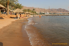 Aqaba Beach in the Red Sea, Jordan (Sebastiao P Nunes) Tags: aqaba jordan redsea marvermelho marrojo sea praia playa beach snunes spnunes spereiranunes mowenpick mar agua water sand areia arena
