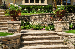 Natural stone landscaping (texaspoolsandpatios) Tags: step steps stair stairs stairway path walkway pathway retain retaining wall walls landscaping landscaped element elements house home natural stone front lead leading nature outside outdoor decor decoration design backyard garden gardening exterior porch curb appeal residence residential architecture summer planter planters flower flowers spring austinpool austinpoolbuilder swimmingpoolconstruction poolrenovationsanantonio designsforpooldecksinsanantonio pooldeckconstructionsanantonio