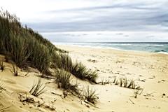 cold day (blackjack66) Tags: canon7d canon canoneos7d canon2470f28usm beach sand sea cold canon2470mm 2470mml